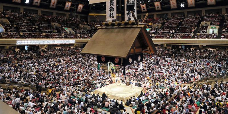 Ông Trump khoái Sumo tới mức nào?