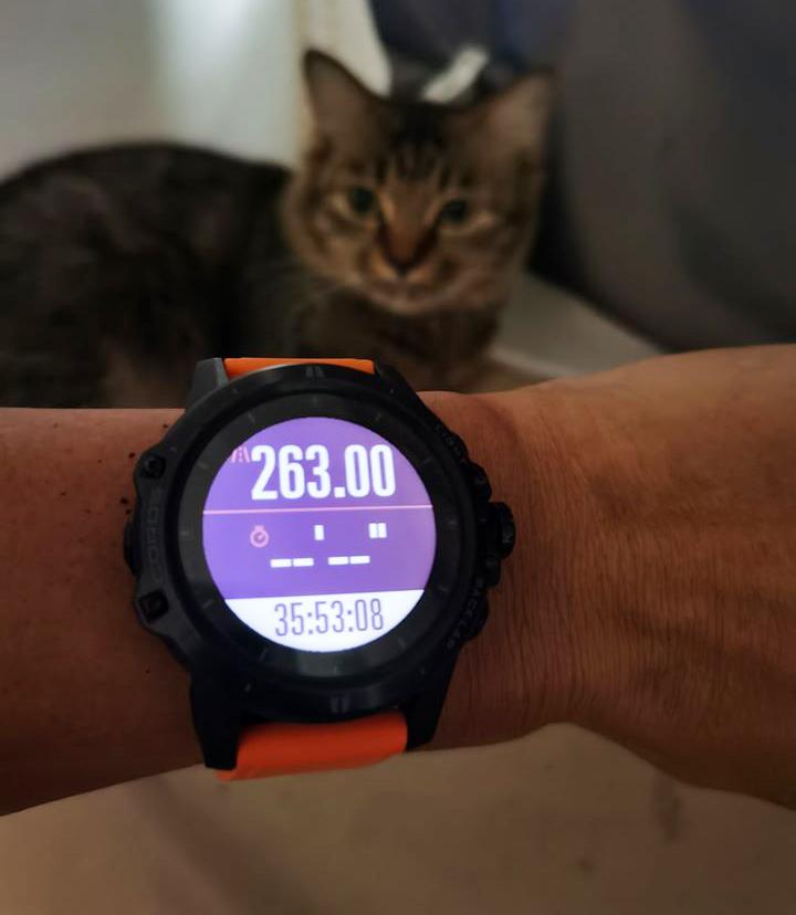 """""""Dị nhân"""" phá vỡ mọi kỷ lục chạy marathon trong nhà: 263km trong gần 36 giờ"""