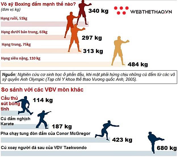 Cú đấm knock-out chết chóc của võ sỹ Boxing nặng bao nhiêu cân?