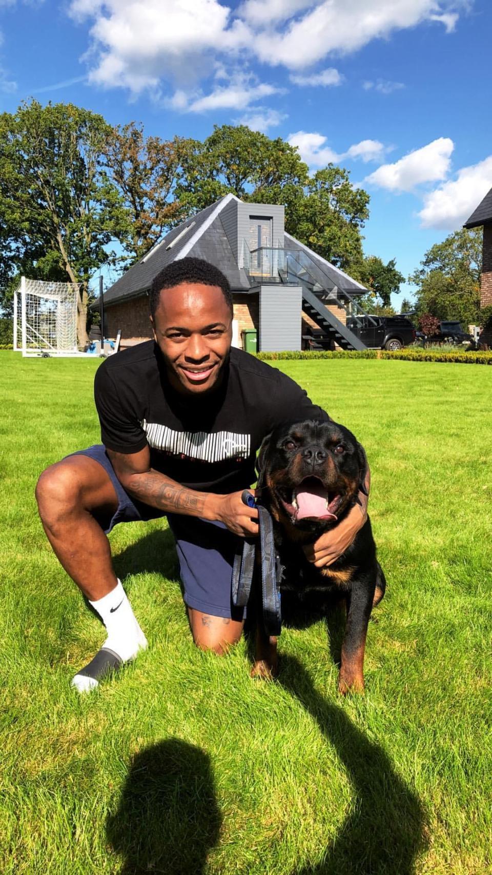 Vừa nhận mức lương khủng, Raheem Sterling mạnh tay chi gần nửa tỷ đồng mua chó vì lý do đặc biệt - Ảnh 1.