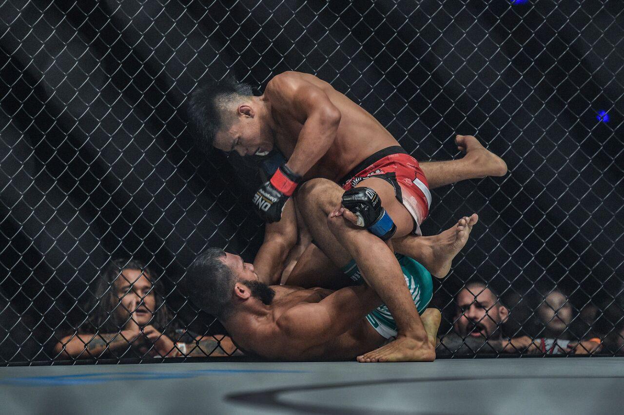 MMA có thật sự tàn bạo như mọi người vẫn nghĩ? - Ảnh 6.