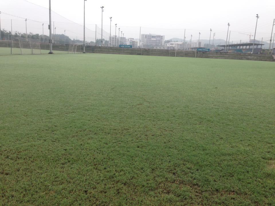 Hệ thống sân tập của CLB Viettel sử dụng cỏ Bermuda 100%